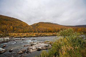 Rivier door de herfst bergen van Noorwegen
