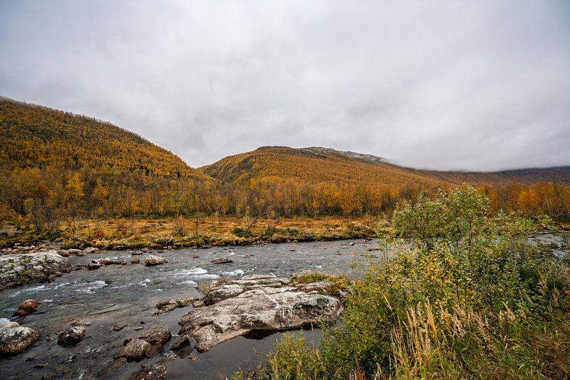 Rivier door de herfst bergen van Noorwegen van Mickéle Godderis