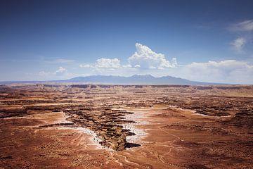 Canyonlands-Nationalpark von Harold van den Hurk