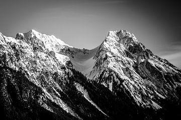 Bergpieken Oostenrijk van