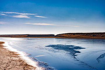 Blauw ijs van Wendy Falentijn