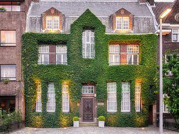 House in Rotterdam sur Lorena Cirstea