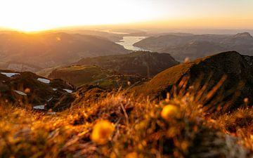 Zonsondergang over de Sihlsee, Kanton Schwyz van Pascal Sigrist - Landscape Photography