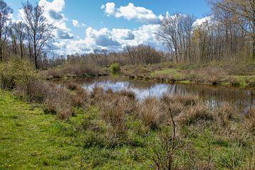 Een riviertje slingert door het landschap van Mark van Harlingen