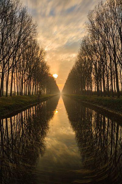 Damme, België van Sven Broeckx