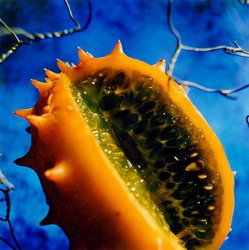 Vrucht van