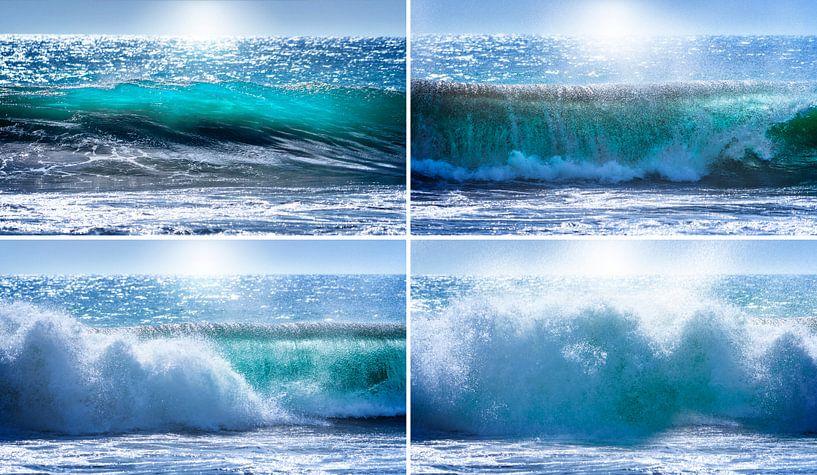 0189 Das kurze, intensive Leben einer Welle von Adrien Hendrickx