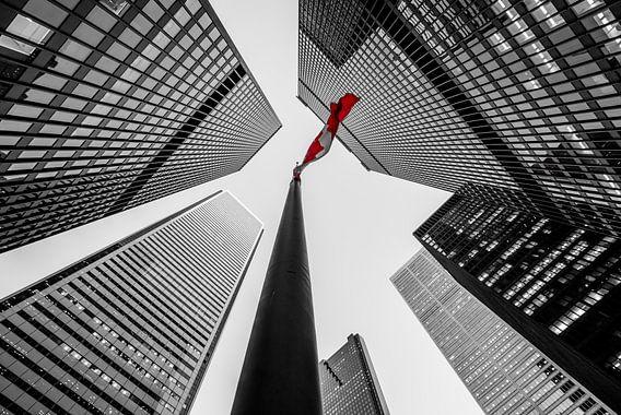 Skyscraper city, Toronto van Reinier Snijders