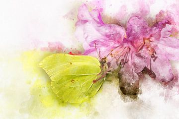 Papillon 3 sur Silvia Creemers