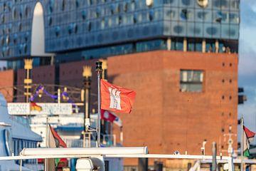 Hamburg van Uwe Ulrich Grün