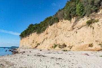 Schwalben am Naturstrand Lobbe von GH Foto & Artdesign
