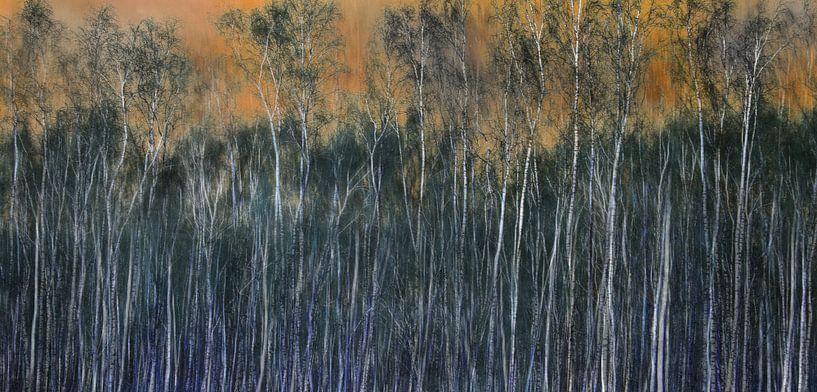 Berkenbos, abstractie van Rietje Bulthuis