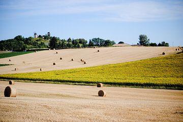 Landschap - Frankrijk von Tess Smethurst-Oostvogel