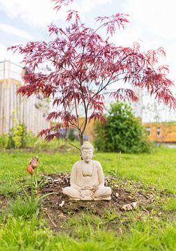 Méditer sous un bonsaï sur Made By Jane