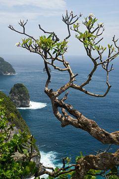 Tropisch eiland van Marja van Noort