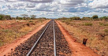 African Railroad van Alex Hiemstra
