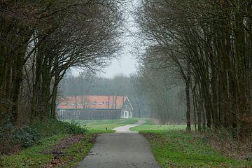 Een boerderij in de Alkeetse Polder 01 van Hans Blommestijn