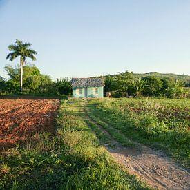 Vinales, Kuba. Ein Panorama mit einem Bauernhof in der Landschaft in Vinales, Kuba. von Tjeerd Kruse