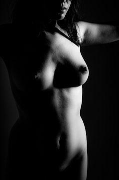 Künstlerischer Akt einer dunklen Frau in Low Key Bodyscape von Art By Dominic