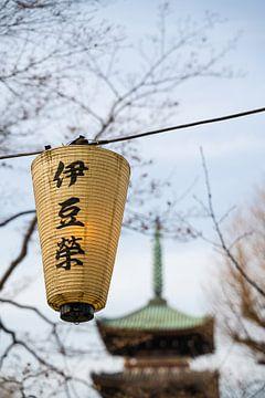 Laterne im Ueno-Park von Mickéle Godderis