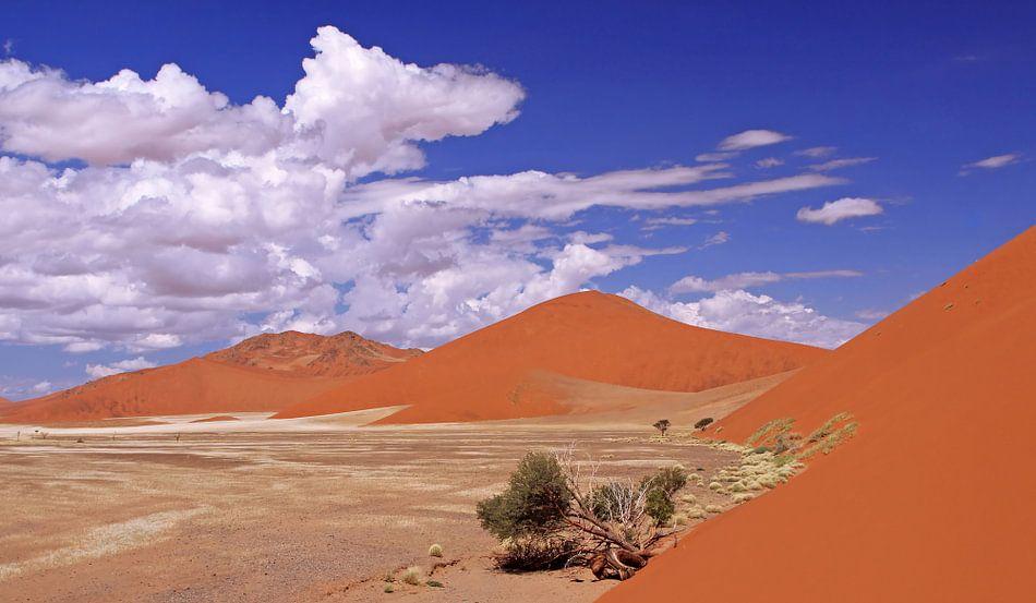 Sossusvlei, Namibia van W. Woyke
