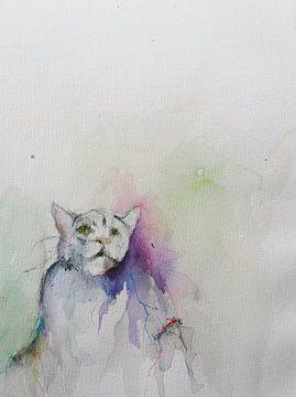 Katzenkraft von Wim Riksen