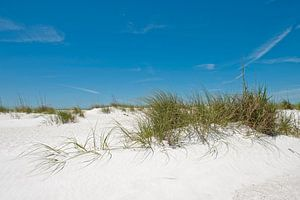 Duinen, strand, zee en een blauwe lucht van Color Square