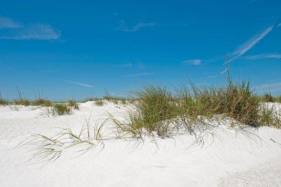 Duinen, strand, zee en een blauwe lucht