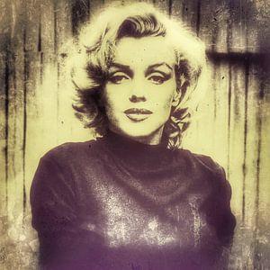 Marilyn 11.2 van