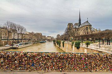Notre-Dame met sloten aan de Pont de l'Archevêché van Dennis van de Water
