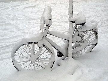 eines schneebedeckten Fahrrad  von Edwin Butter