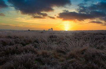 Sonnenaufgang in den Niederlanden von Rick van de Kraats