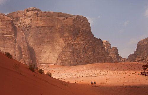 Kamelen in Wadi Rum van Jos Hug