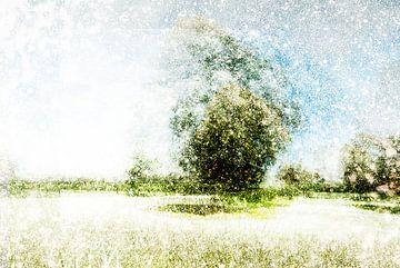 Nederlands landschap Den Bosch, Nederland van Peter Baak
