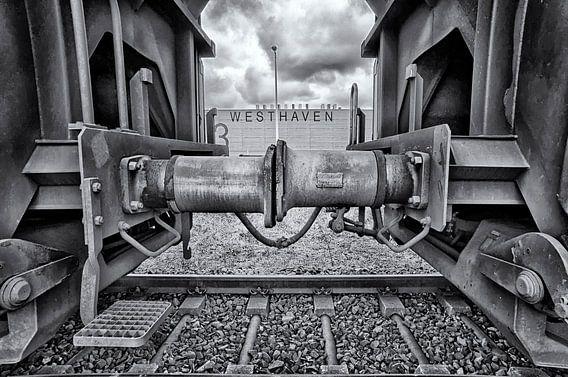 Westhaven van Peter Bongers