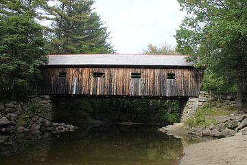 typische new england covered bridge van Bas Berk