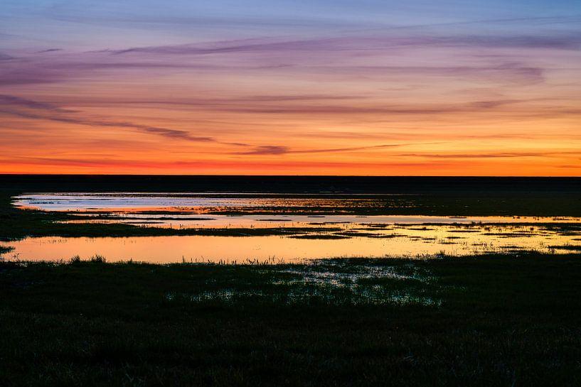 Zonsondergang in de Flevopolder van Fotografiecor .nl