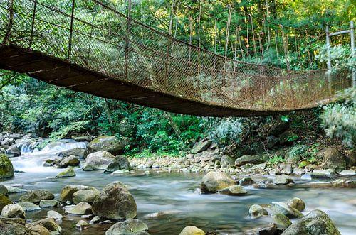 Bridge over a stream von Richard Guijt