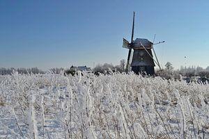 Molen de Hommel in besneeuwd landschap van