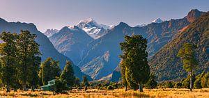 Ochtend nabij Fox Glacier, Zuider Eiland, nieuw Zeeland