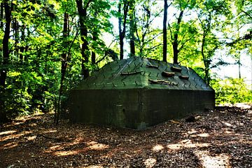 Bunker in het Kocherbos van David van Coowijk