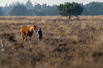 Het Paardenmeisje van Lilian van der Linden
