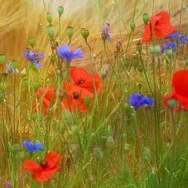 zomerbloemen van Yvonne Blokland