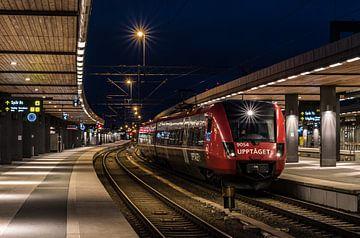 Uppsala station van Werner Lerooy