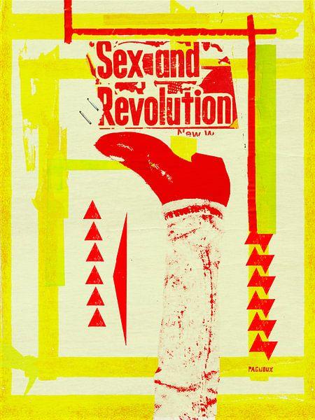 Sex and Revolution sur sandrine PAGNOUX
