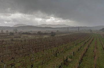 Stormy landscape von Marcel Kerdijk