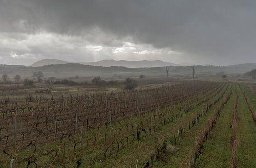 Landschap, Stormachtig weer boven wijnvelden  van
