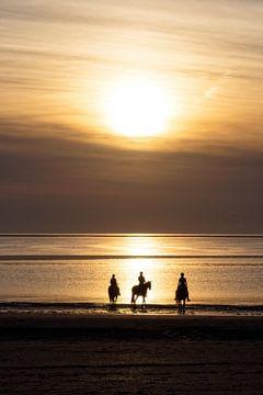 Paarden, strand en zonsondergang.. van Miranda van Hulst
