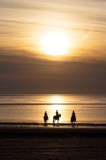 Paarden, strand en zonsondergang..