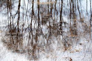 Reflecties in water.